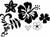 stock photo of hawaiian flower  - Tropical Vector Illustration - JPG