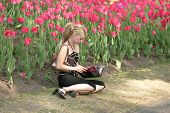 picture of 24th  - taken at ottawas tulip festival may 24th - JPG