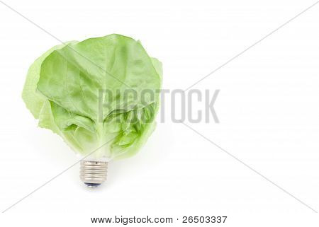 Leaf light bulb