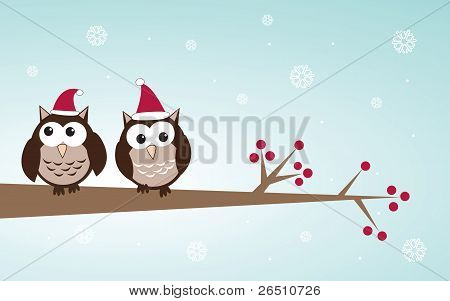 Owls couple in christmas hats on the tree branch.
