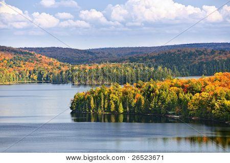 Herbst Wald und See