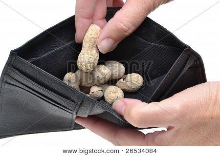 Nut Pay