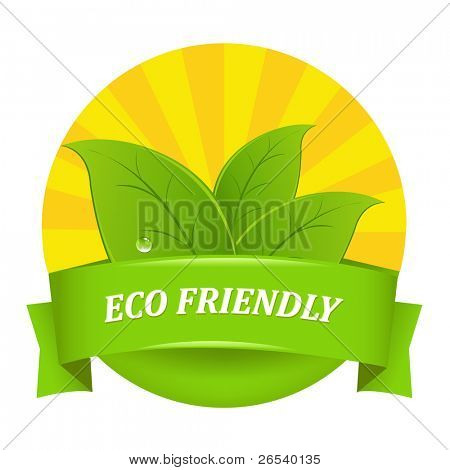 Eco Friendly Icon, Isolated On White Background, Vector Illustration