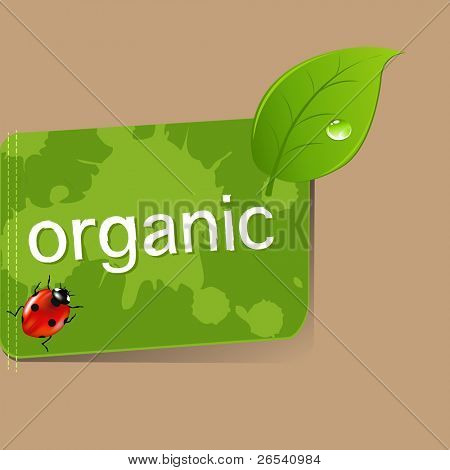 Organic Label, Vector Illustration
