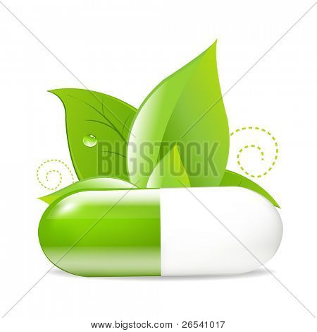 Tablet With Leaves, Isolated On White Background, Vector Illustration