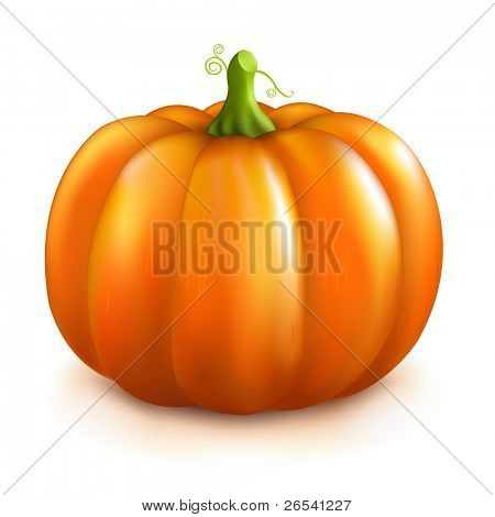 Kürbis, Isolated On White Background, Vector Illustration