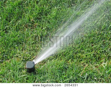 Sprinkler Spraying Water On Grass