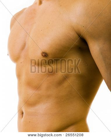 close up image of muscular perfect male torso on white background