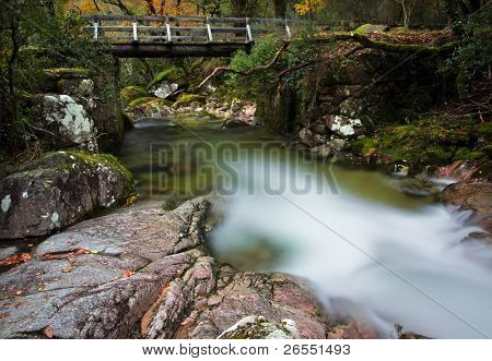 Autumn forest with wood bridge at Geres National Park, Portugal