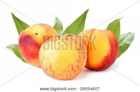 three peaches on a white backgroundand with soft shadow