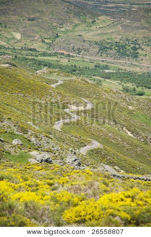 Multiple S Road At Gredos Mountains