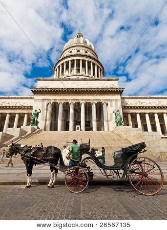 La Habana-marzo 14:Horse espera de carros para turistas en frente del Capitolio puede 14,2011 en Havana.Tour
