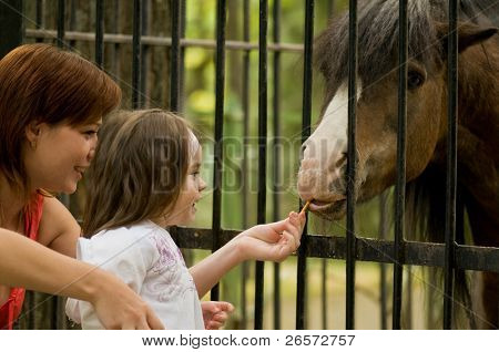 3 year old girl and small pony