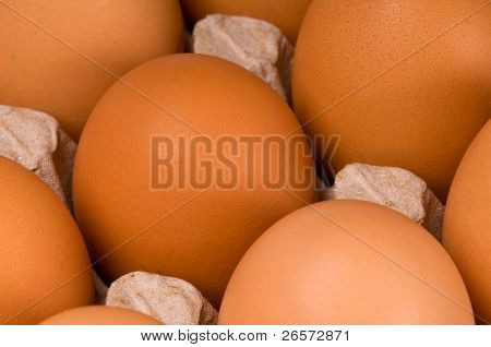 Brown eggs in packing for eggs