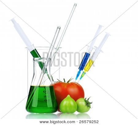 Genetically modified organism - ripe tomato with syringes and laboratory glassware on white background