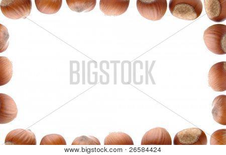Isolated frame of hazelnuts