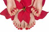 stock photo of toe nail  - Christmas spa with manicured hands and pedicured feet - JPG