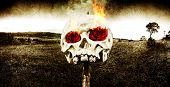 foto of morbid  - Dark Morbid Photo Of A Skull On A Wooden Stake With Burning Rose Eyes On A Gloomy Landscape Background In A Sad Depiction Of The Tragedy And Hellfire Of Love - JPG