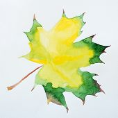 Watercolor autumn leaf. Fall foliage. Autumnal design. Seasonal decorative beautiful multi-colored d poster