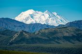 Denali National Park With The Mountain (previously Named Mt Mckinley) In Full View, With Blue Skies  poster