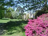 image of hever  - Springtime in the grounds and garden of Hever Castle Kent. Childhood home of Anne Boleyn second wife of Henry VIII of England and the mother of Queen Elizabeth I ** Note: Shallow depth of field - JPG