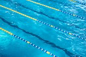 Aerial View Of A Swimming Pool With Dividers. Concept For Sport And Professional Swimming poster