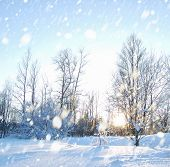 stock photo of winter landscape  - Winter landscape with snow - JPG