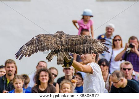 STARA LUBOVNA, SLOVAKIA - AUGUST 26: female falconer performing with her bird during Falconry Show in Stara Lubovna, August 26 2012, Stara Lubovna, Slovakia