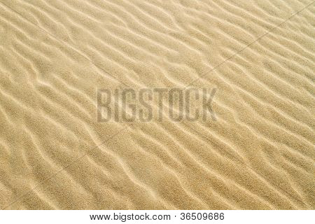 Yellow sand texture