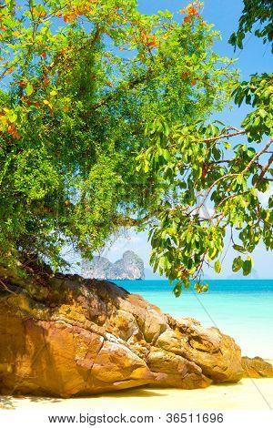 Serenity Shore Jungle Lagoon
