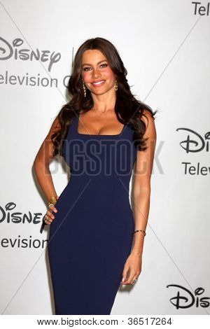 LOS ANGELES - AUGUST 1:  Sofia Vergara arrive(s) at the 2010 ABC Summer Press Tour Party at Beverly Hilton Hotel on August 1, 2010 in Beverly Hills, CA.