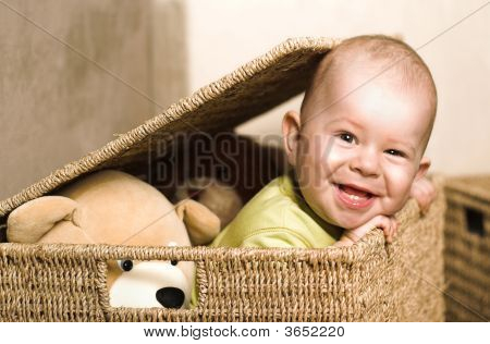 Baby In The Basket