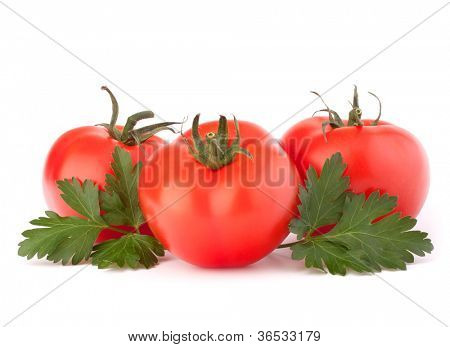 Three tomato vegetables and parsley leaves still life isolated on white background cutout