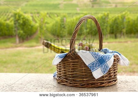 Basket and bottle of white Pinot wine in front of a vineyard in Alsace, France