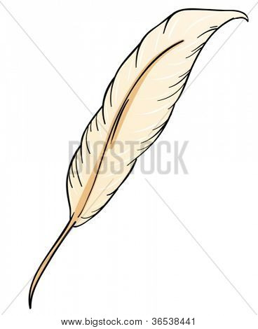 illustration of a feather in white background