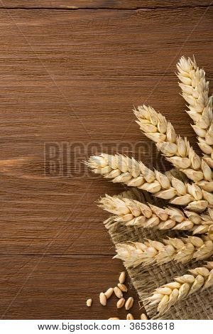 ears of wheat on burlap background