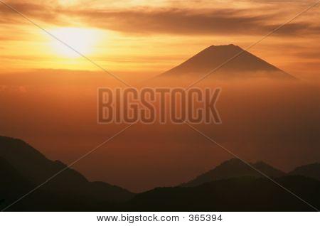 Orange Fuji