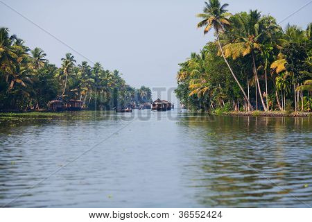 houseboats on the backwaters of Kerala state, South India