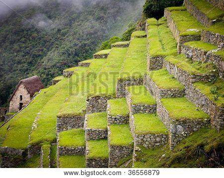 Inca Trail to Machu Picchu in Peru