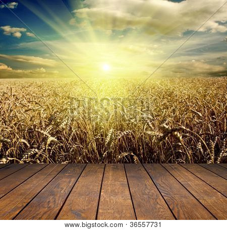 wood textured backgrounds in a room interior on the field and meadow backgrounds