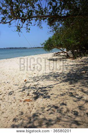 seascape of pailus beach