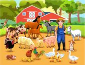 foto of turkey-hen  - farm animals - JPG