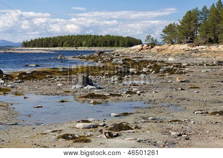 The White Sea Coast At Low Tide, Kola Peninsula, Russia