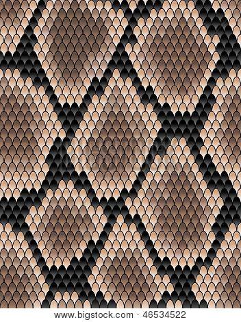 Naadloze patroon van slangevel