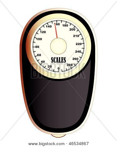 Bathroom Scales.