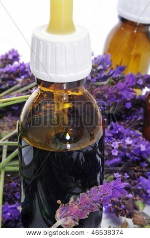a pile of lavender flowers and some dropper bottles with natural remedies on a white background