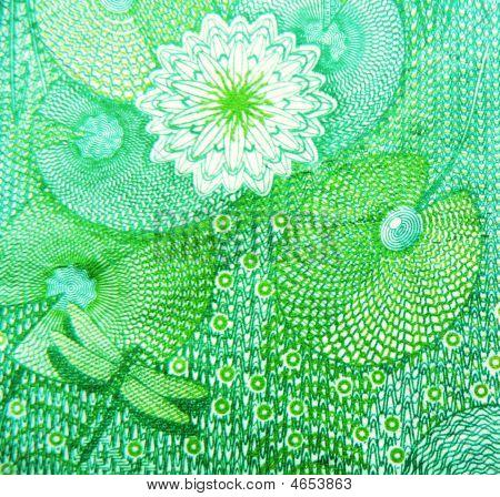 Lilly Pond & Dragonfly