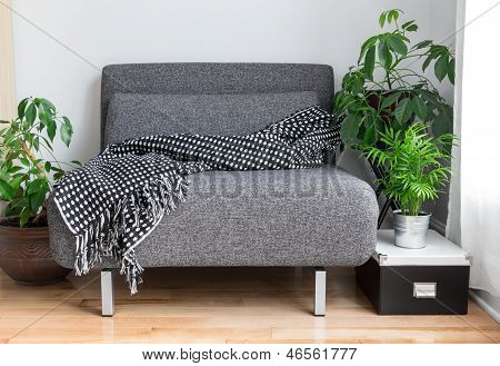 Gray Fabric Chair And Plants In The Living Room
