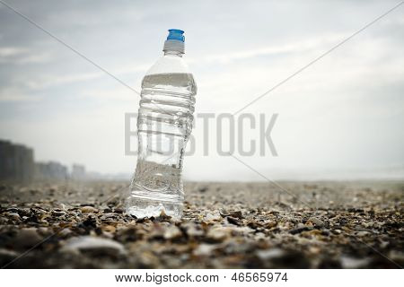 Single Water Bottle On Shells At The Beach