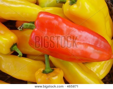 One Red Pepper